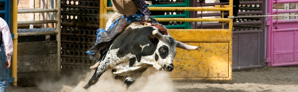 Tips to Planning Your Trip to the Calgary Stampede