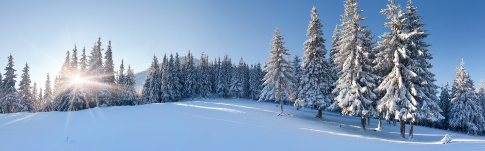 5 Best Places To See Snow In India - Skyscanner India