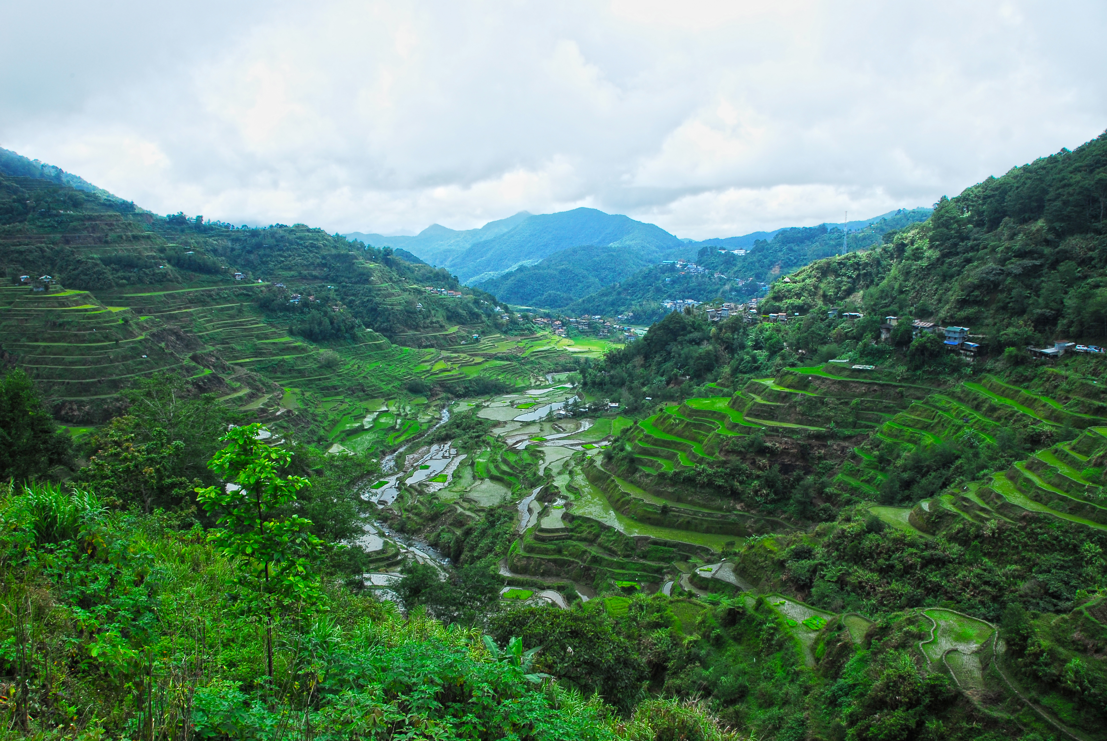 Rice terraces in Banaue and Batad