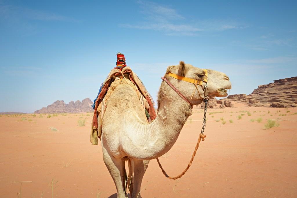 Пустыня Вади-Рам в Иордании