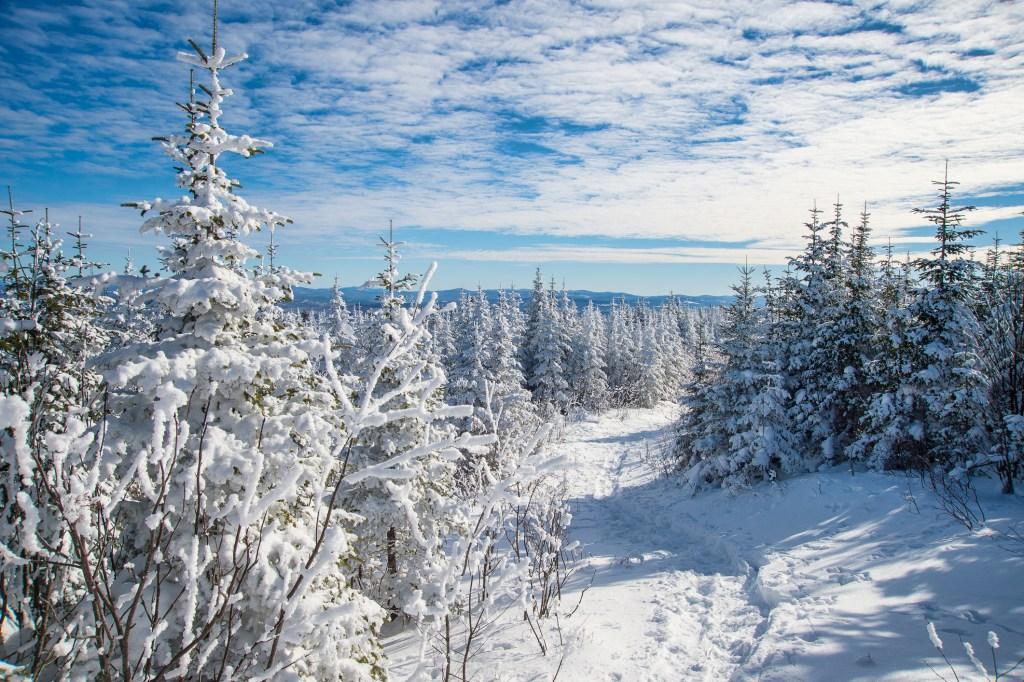 competiciones de esquí en Canadá