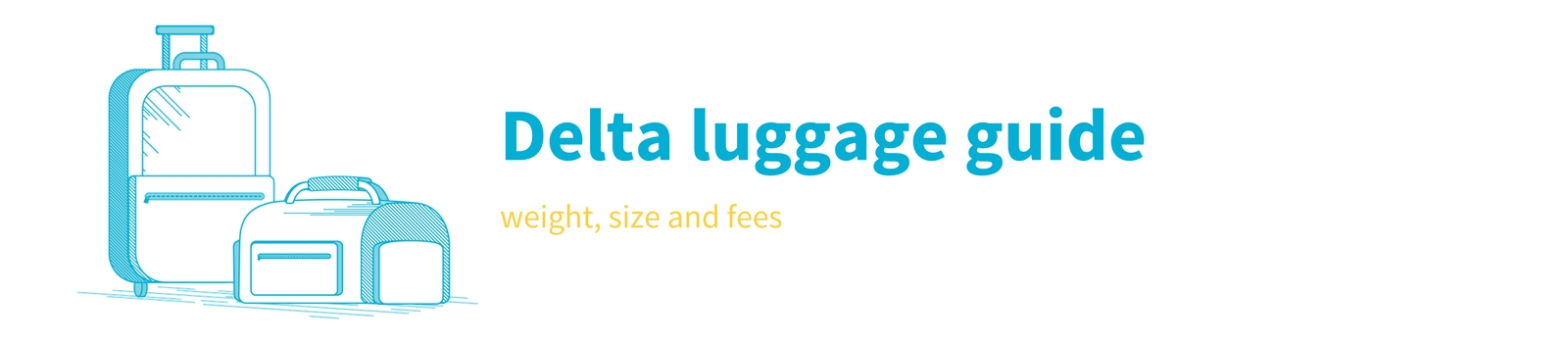 Understand The Carry On Limits For Delta Baggage
