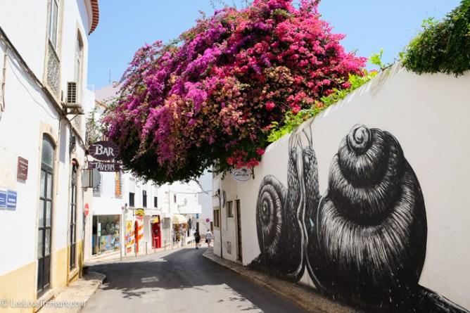 Μια ανθισμένη μπουκαμβίλια καλύπτει ένα δρομάκι του Αλγκάρβε στολισμένο με γκράφιτι