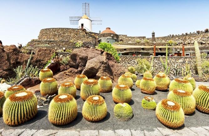 O Kήπος με τους Κάκτους στο Λανθαρότε