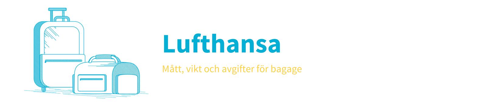 bagage storlek norwegian