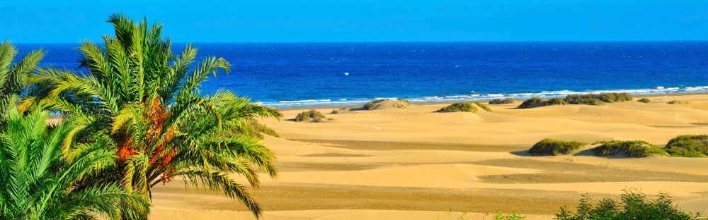 830c322c3de Top 10 things to do in Gran Canaria in 2019