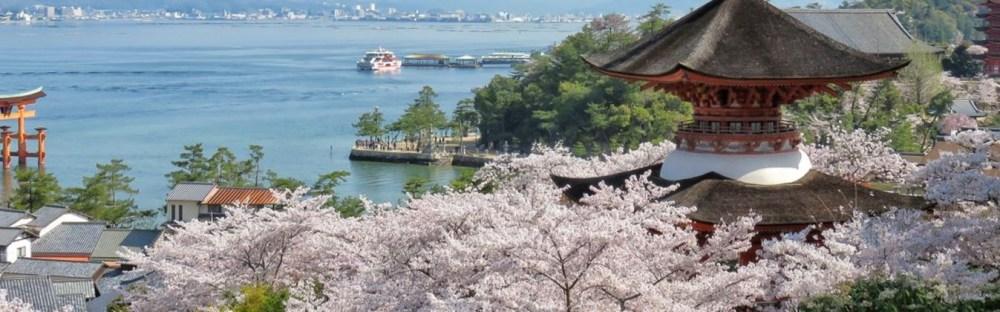Promo Tiket Pesawat Pp Untuk Musim Sakura Di Jepang Dari