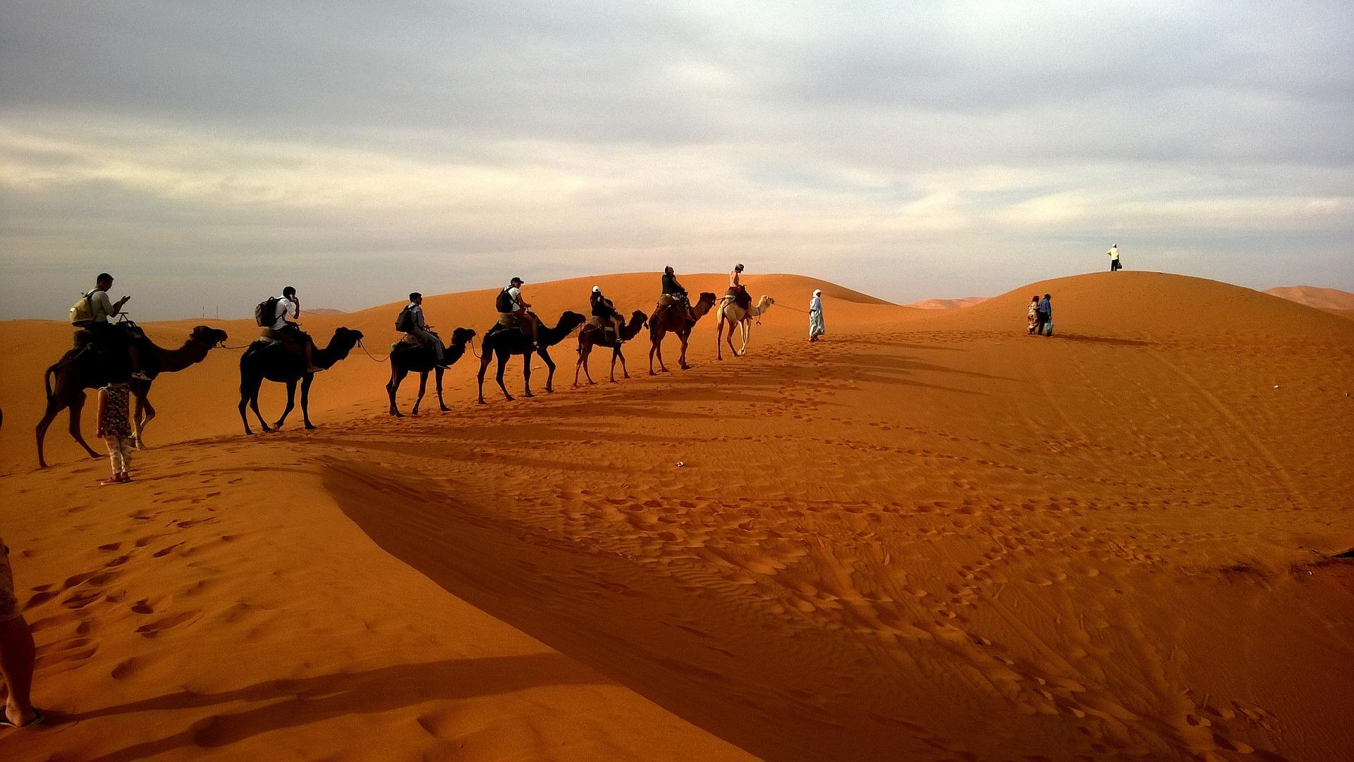 Εκδρομή με καμήλες στην έρημο Σαχάρα - ταξίδι στο Μαρόκο