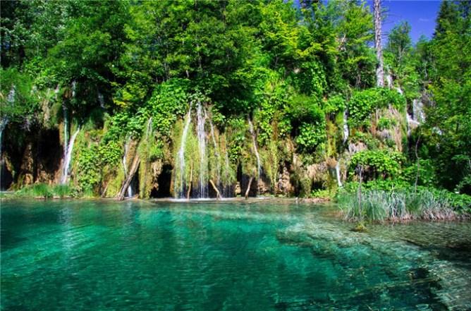 Lush green scenery in Plitvice Lakes, Croatia