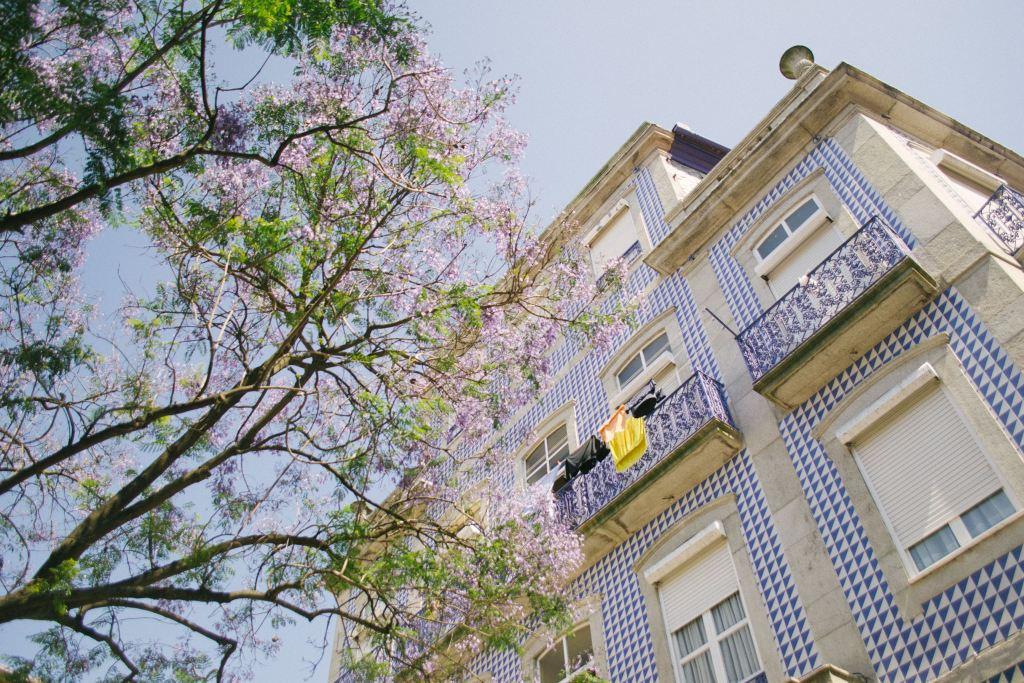 Το μπλε και το γαλάζιο δημιουργούν τα πιο ενδιαφέροντα διακοσμητικά μοτίβα στους τοίχους του Πόρτο.