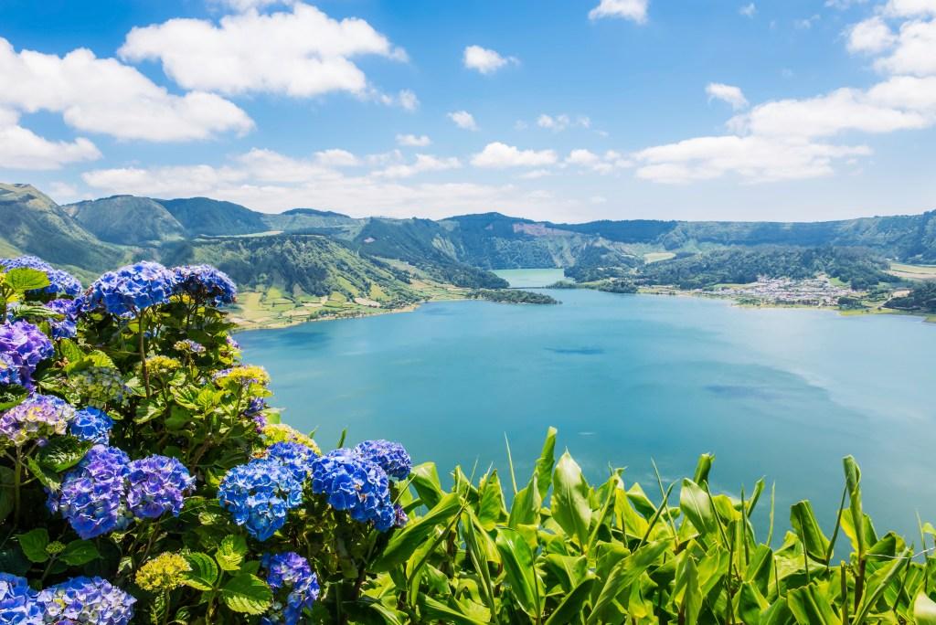 Mωβ ορτανσίες και πράσινοι λόφοι γύρω από λίμνη στις Αζόρες