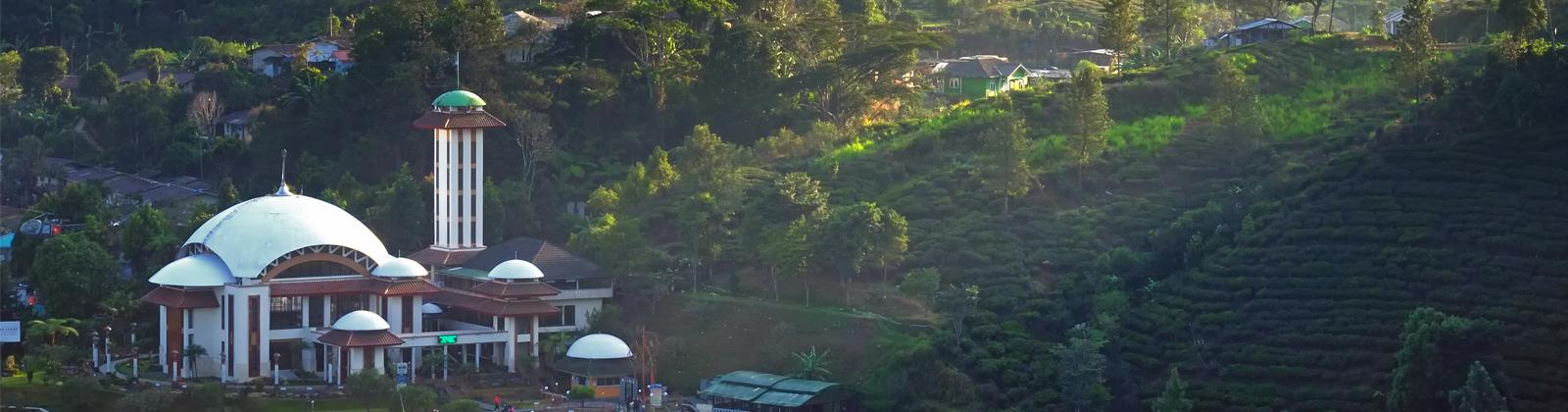 9 tempat wisata di puncak dan bogor selain kebun teh cipanas dan rh skyscanner co id