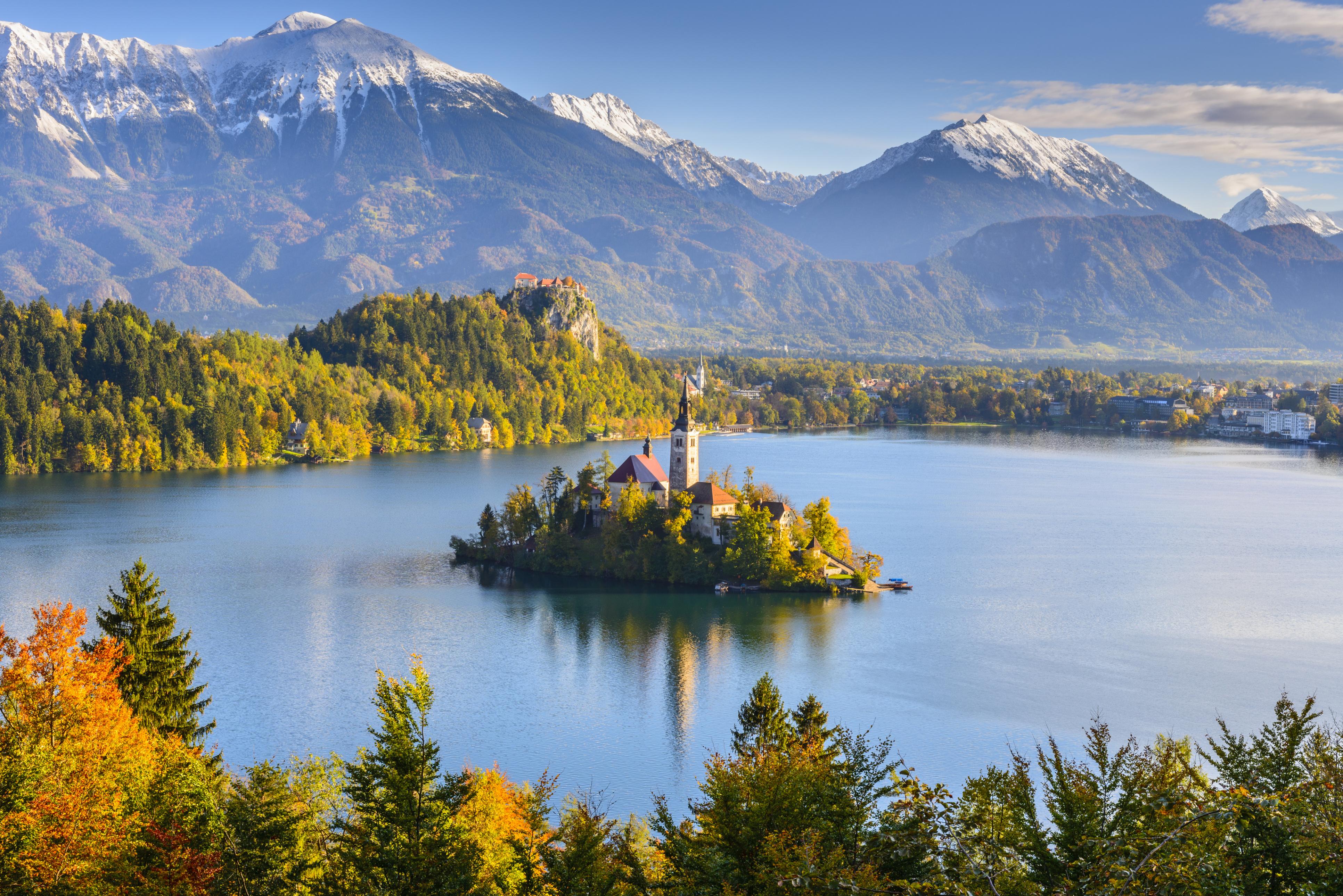 Lush nature around Lake Bled, Slovenia