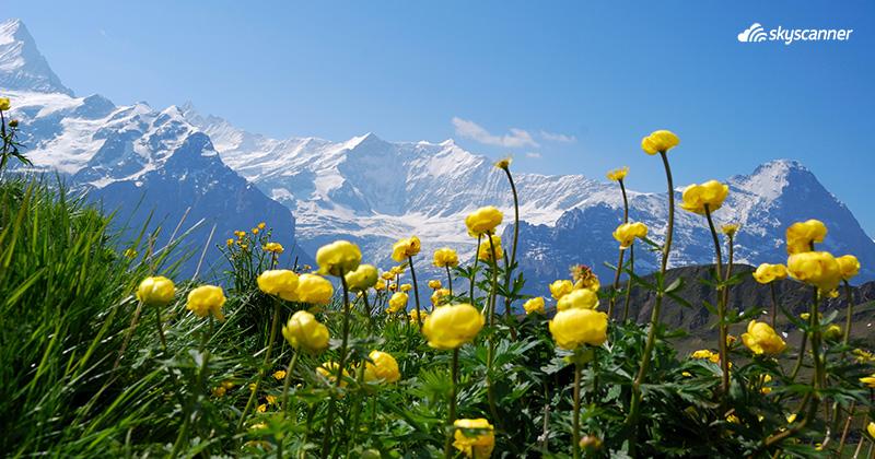 Que ver en Suiza, Interlaken