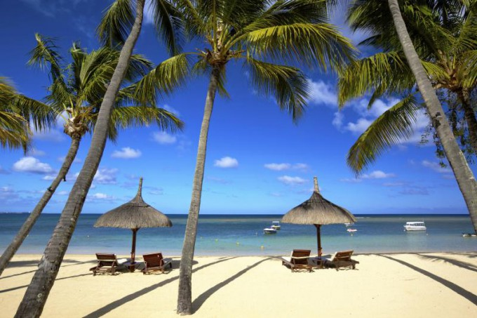 White sand beach with palm trees. Air Transat Black Friday deals