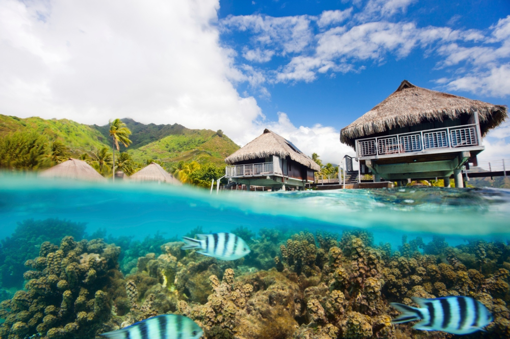 Sleeping With The Fishes The World S Best Underwater Hotels