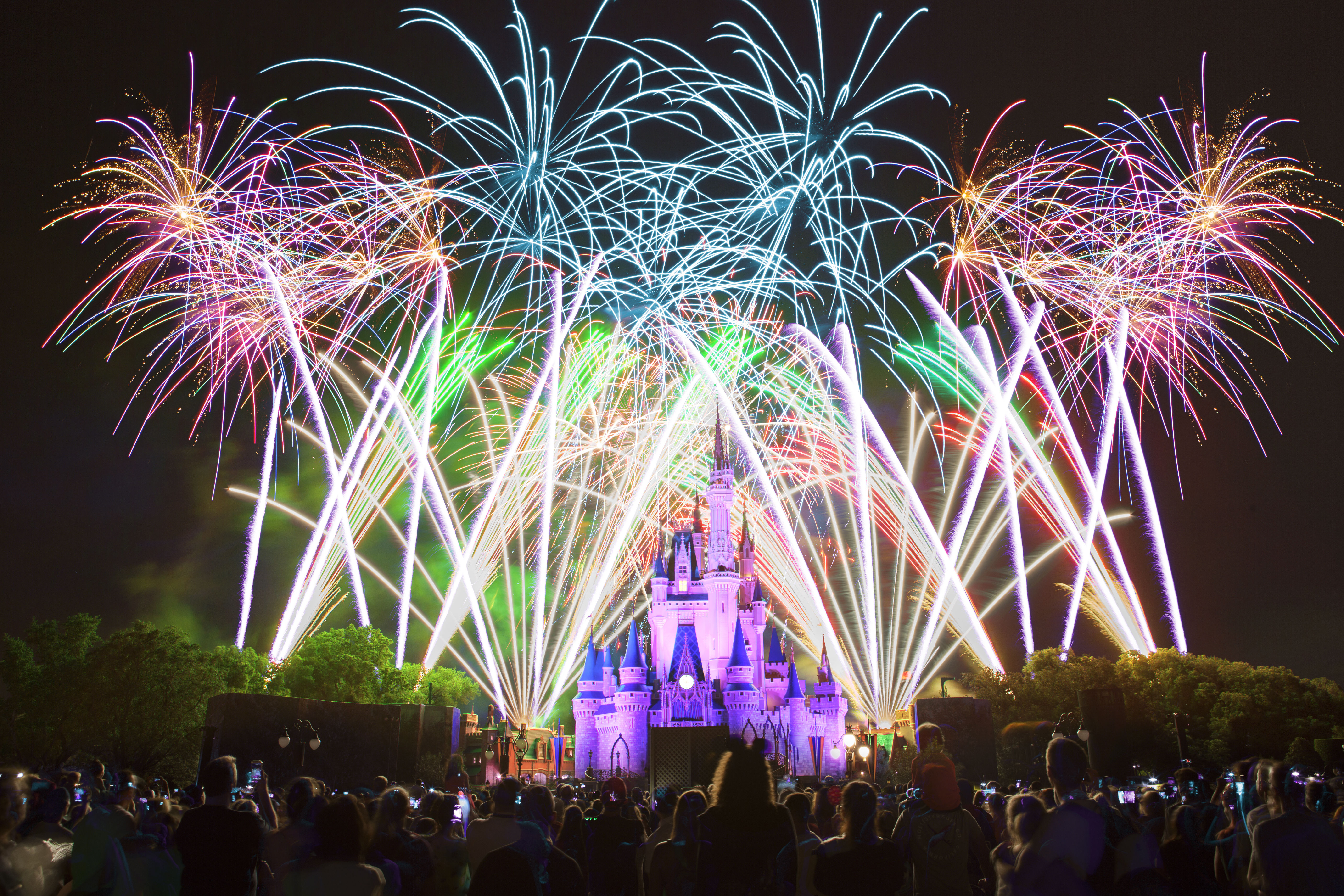 head to orlando for new years at the happiest place on earth