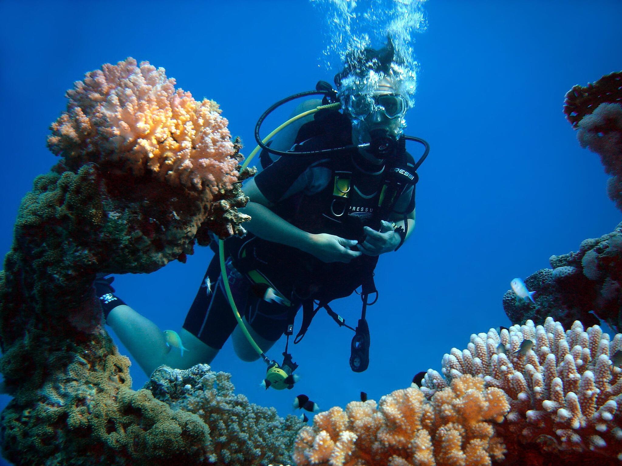 Buceo en el Mar Rojo en Egipto