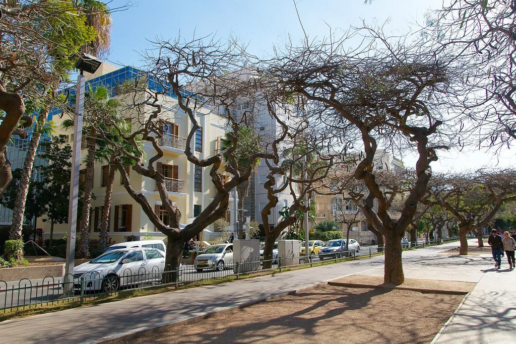 rothschildboulevard-telaviv-israel-editorial-use-only-vesselinkolev-flickr