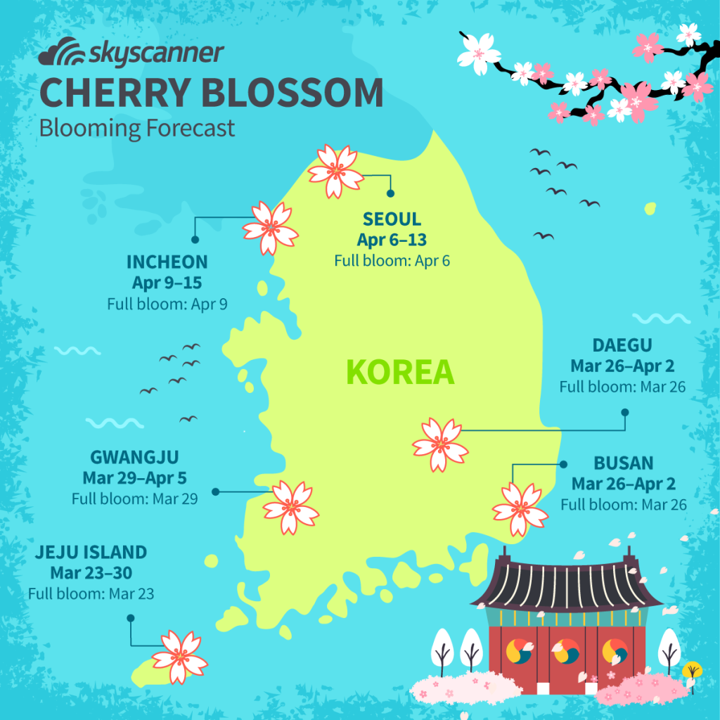 Best K Drama 2020 Best places to see cherry blossoms in Korea for 2020
