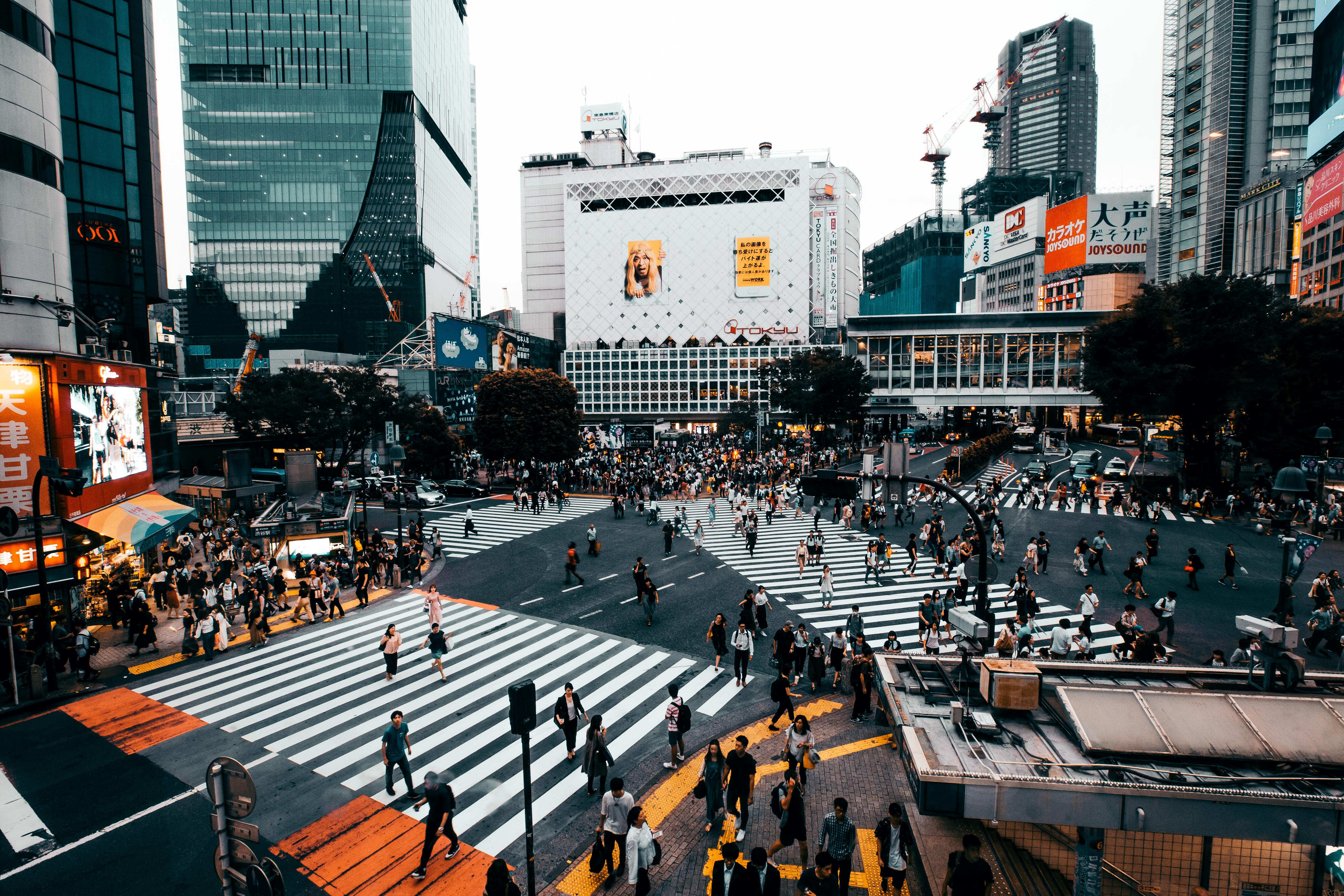 Qué ver en Tokio: el cruce de Shibuya