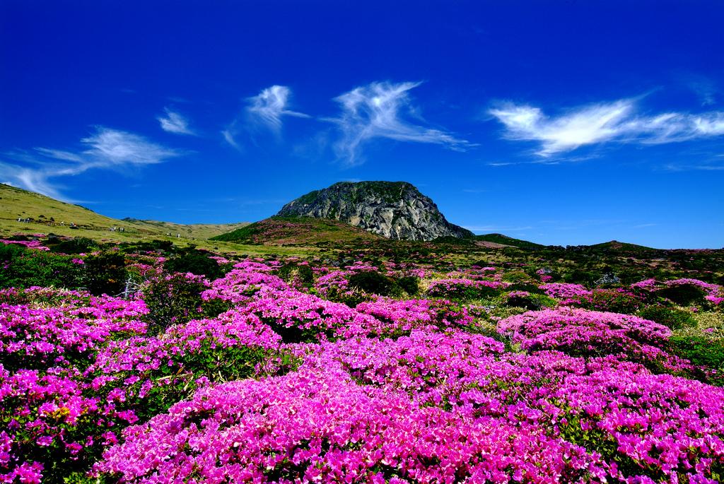 jeju island korea itinerary