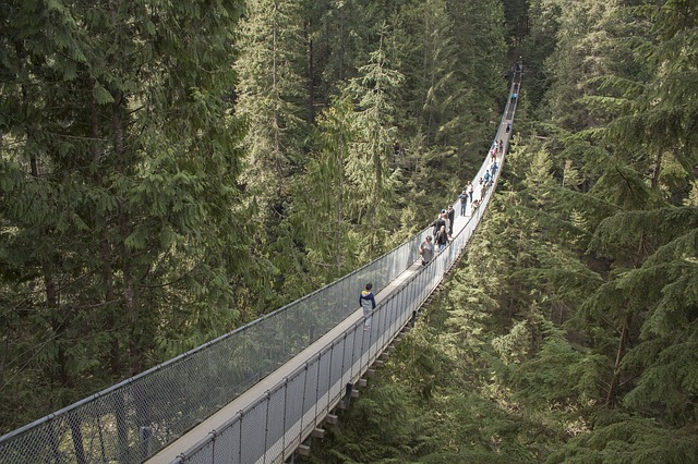 People walking on the Capilano suspension bridge. Things to do in Vancouver.