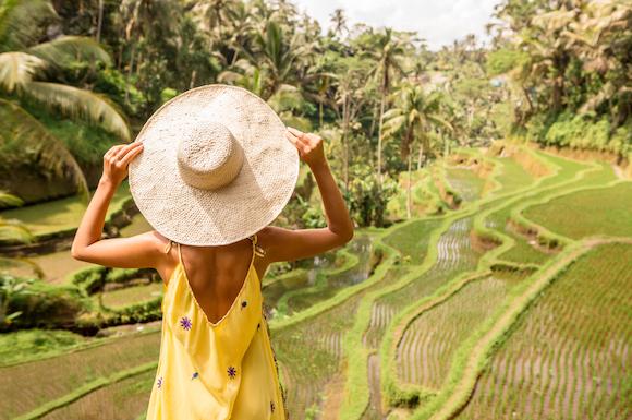 インドネシア バリ島 ウブドの田園風景
