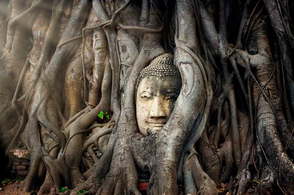 タイ アユタヤ 神秘的なワットマハタート