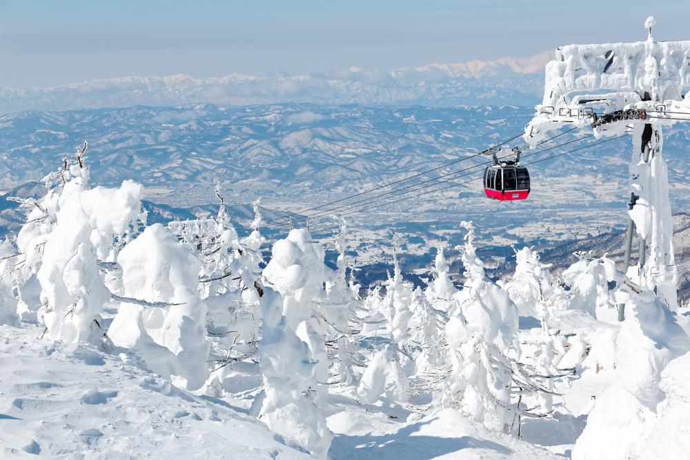 山形 蔵王温泉 樹氷ライトアップ