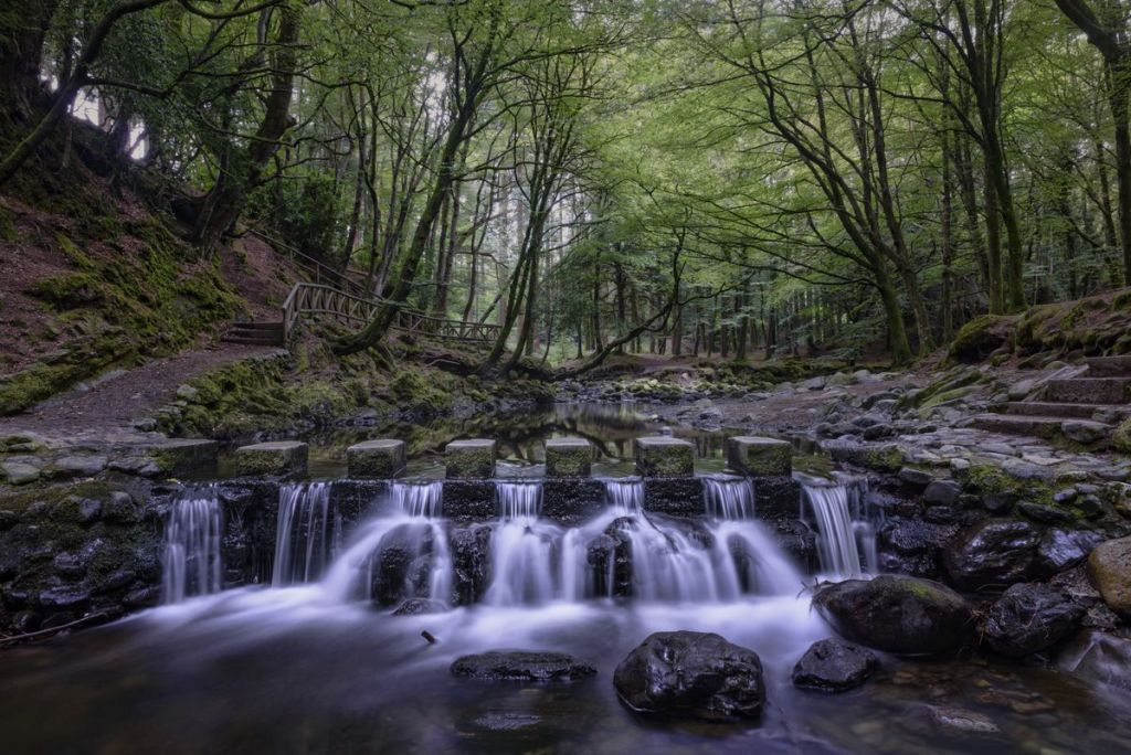 Cascades in Tollymore Forest Park, Northern Ireland