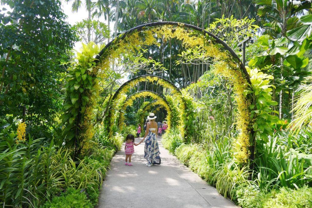 シンガポール植物園(Singapore Botanical Gardens)