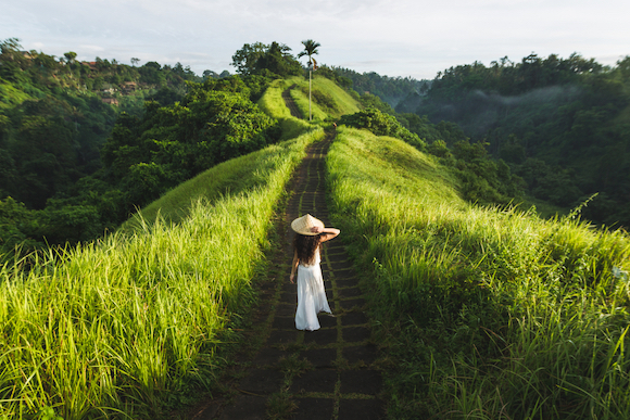 インドネシア バリ島 ウブド郊外の田園風景