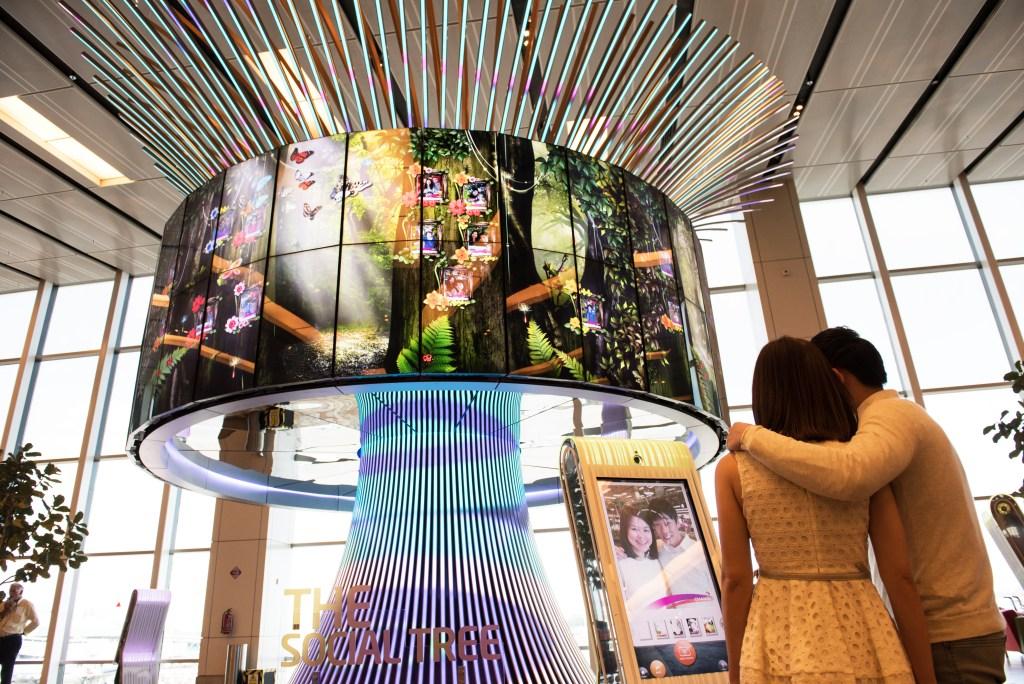 «Социальное дерево» в аэропорту Сингапура Чанги