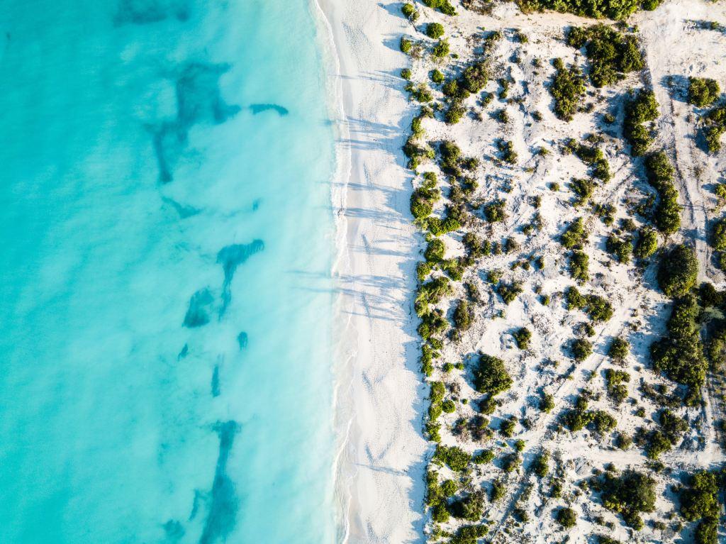 Онлайн дикий самый солнечный пляж мира сисек толстух