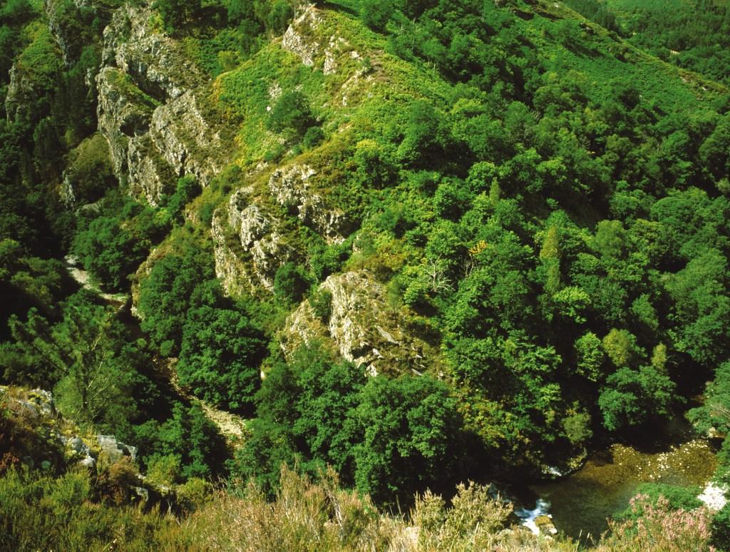 Rutas de senderismo por Asturias: Hoces del Esva