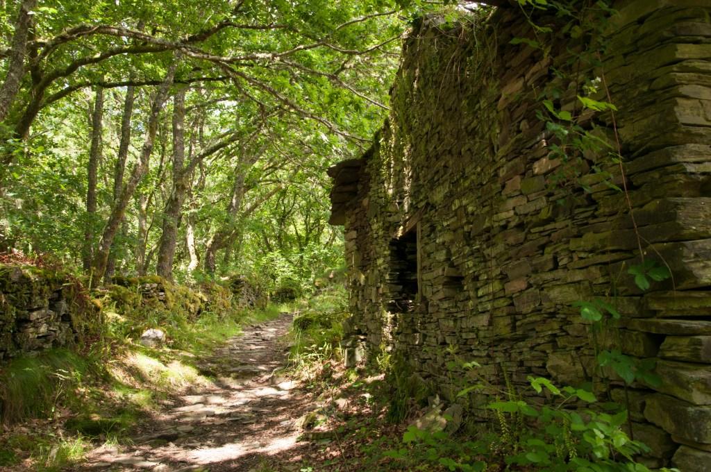 rutas de senderismo por Asturias: ruta de la semeira