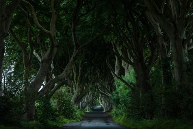 game of thrones, trono de hierro, irlanda del norte, locaciones game of thrones, visitar sets got